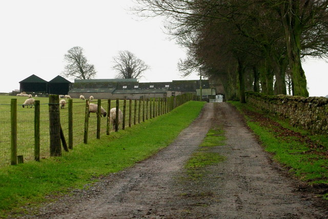 Track to Stonybeck Farm