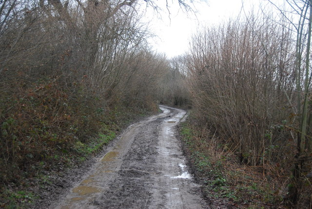 Bridleway heading west from the River Eden