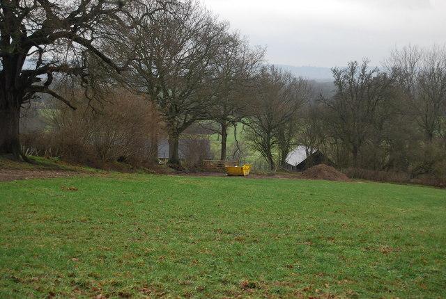 Gilridge in the trees