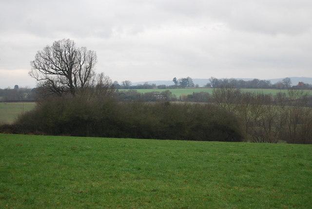 View NW from near Gilridge