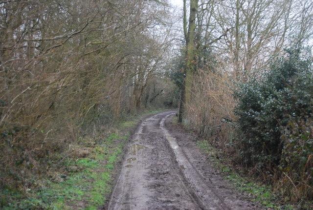 Muddy track to Wat Stock