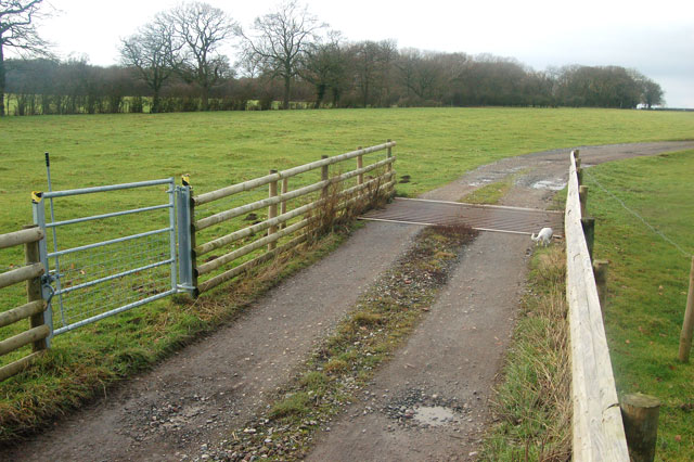 Cattle grid at the entrance to Calcutt House Farm