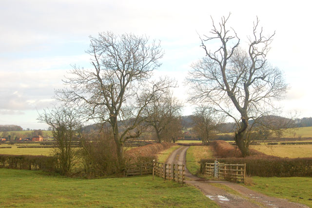 Looking southeast along the track from Calcutt House Farm