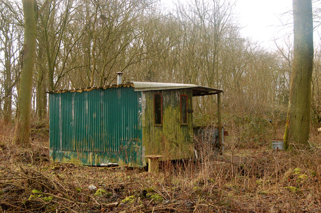 An old shed in Calcutt Spinney