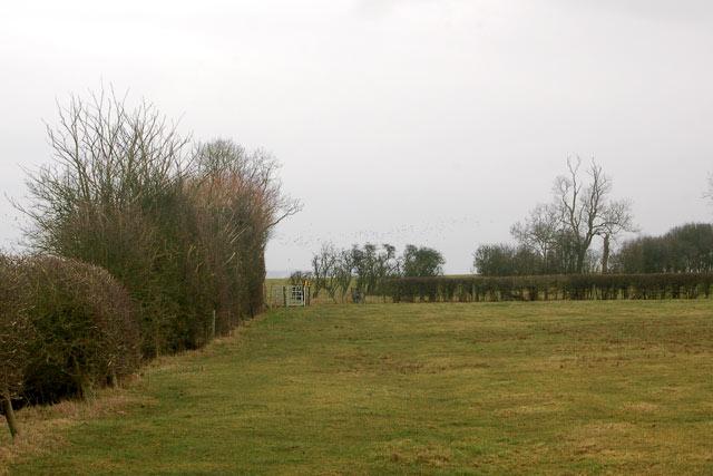 Looking north along a footpath near Calcutt locks