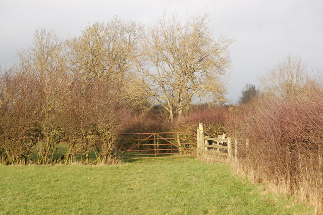 Gate on the bridleway to Broadwell north of Tomlow