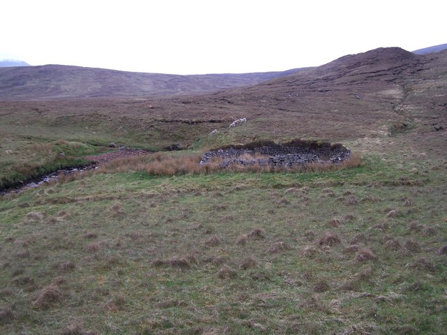 Dilapidated sheepfold with posing sheep!
