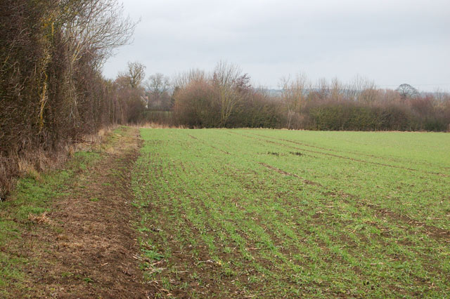 Looking north towards Broadwell House Farm