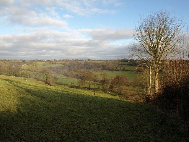 Field at Clayhidon