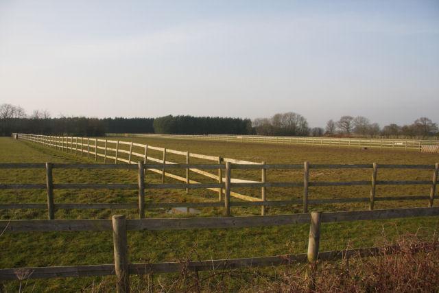 Paddocks near Hightown Green