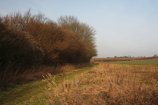 Footpath to The Hobbets, Hitcham