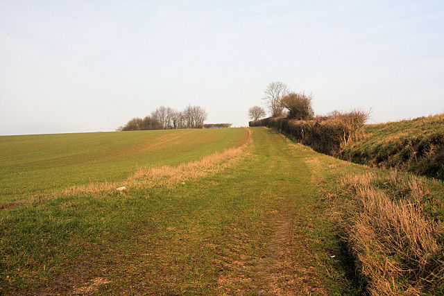 Farm track south of Hitcham