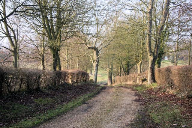 Track leading to Bentons