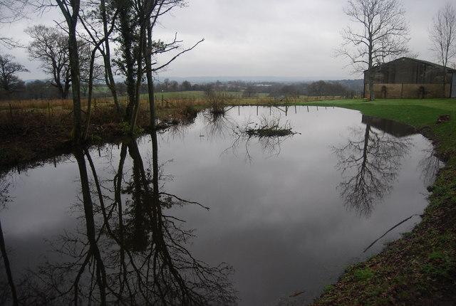 Large Pond, Little Wat Stock