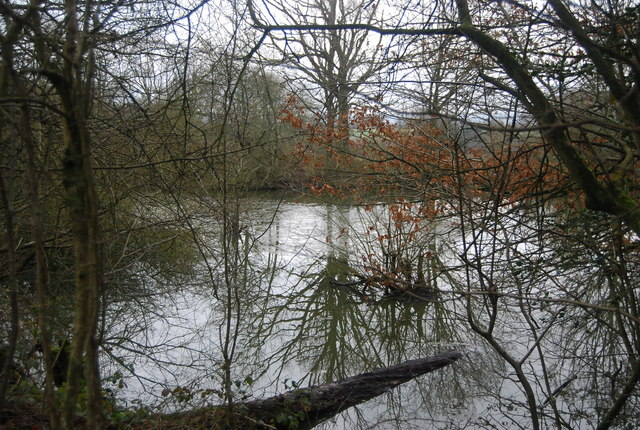 Pond in the woods, near Wat Stock