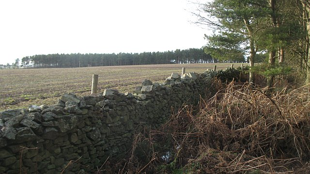 Farmland, Brockholes