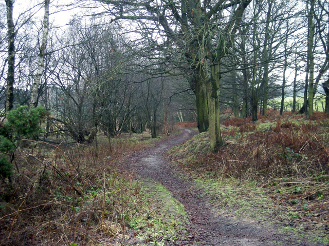Wet & muddy footpath