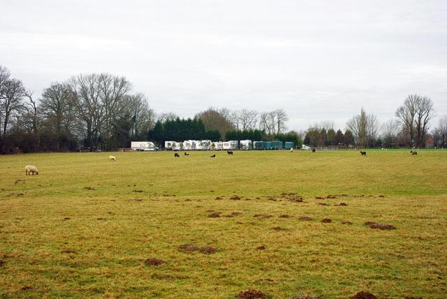 Molehills, sheep and caravans