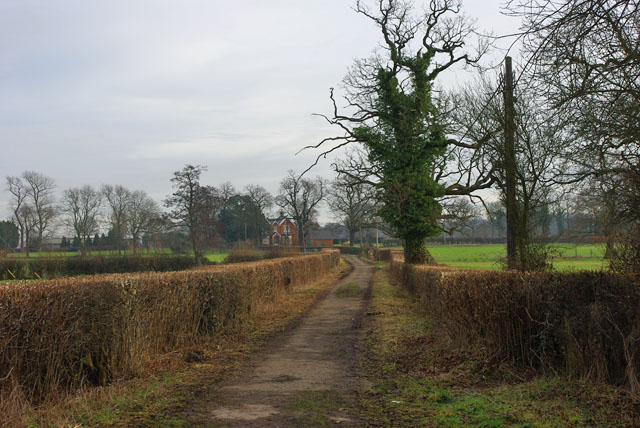 Old drive to Park Farm