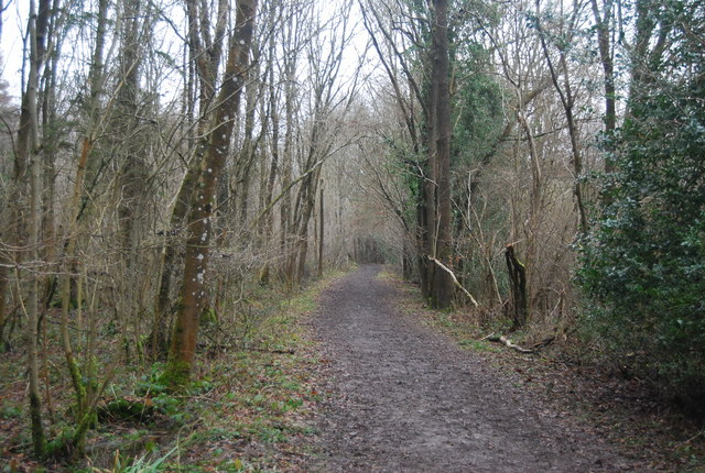 Footpath through The Slips