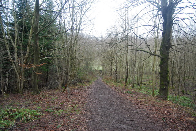 The Wealdway through The Slips