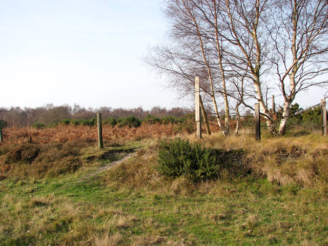 Heathland adjoining dismantled railway trackbed