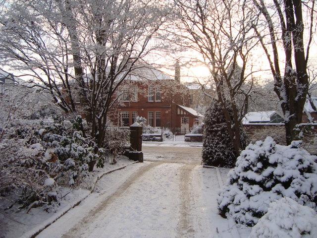 Snowy gardens in Rowan Road