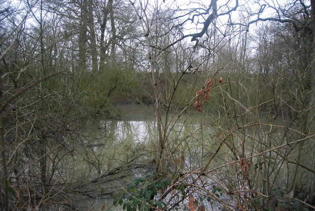 Pond by the path on the way to Chiddingstone