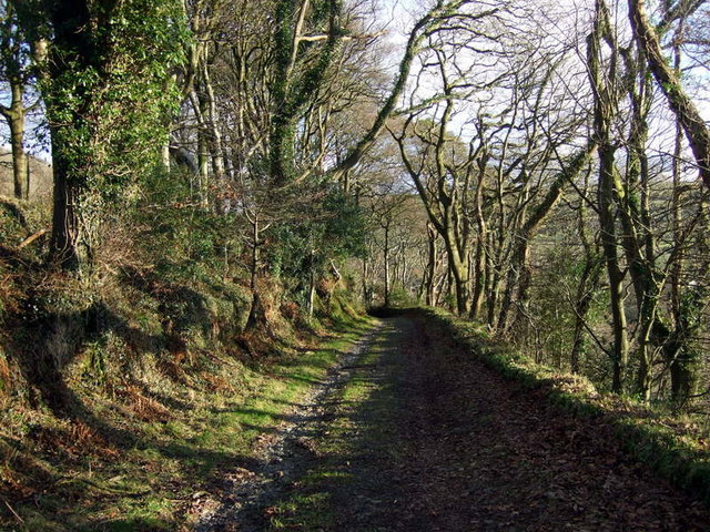 Old carriage road