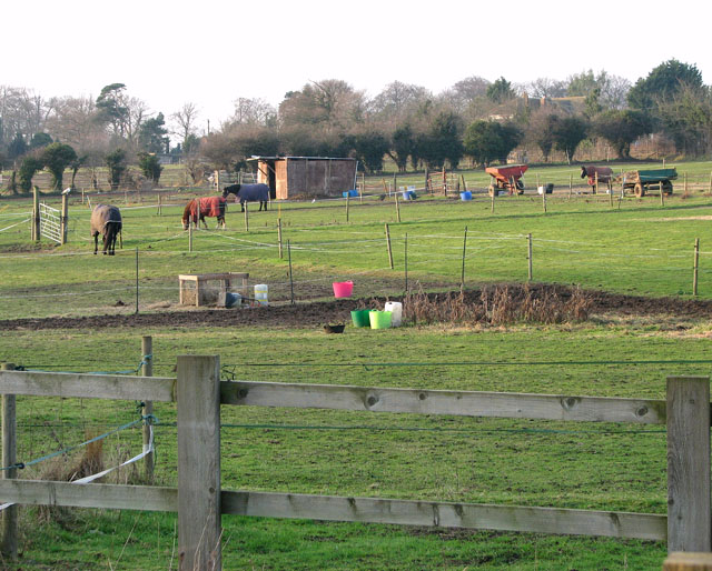 Paddocks west of Doles Lane, Bradwell