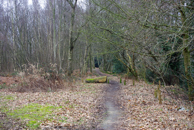 Path along crest, Tilburstow Hill