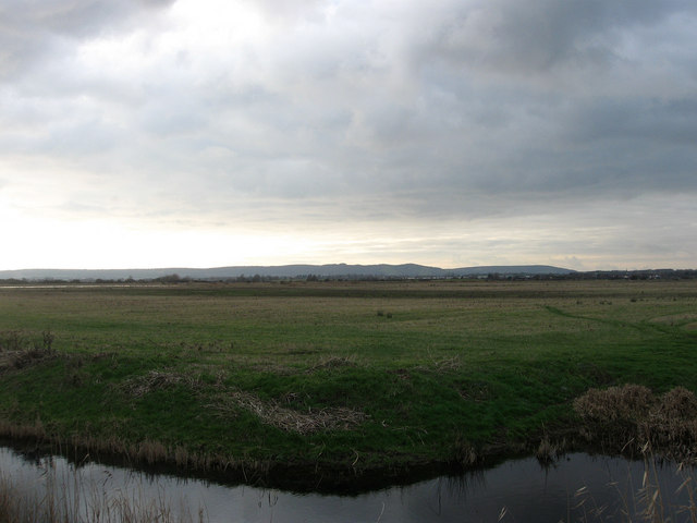 The Haven Marsh