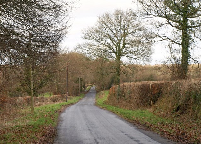Lane near Clayhidon