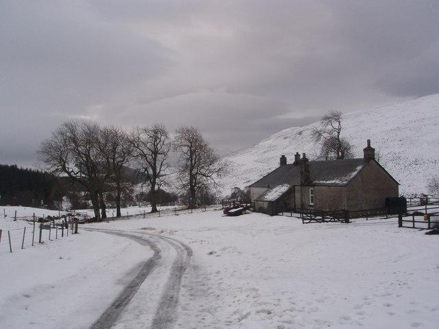 Runtaleave in the grip of winter.
