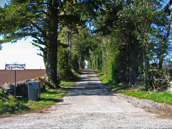 Farm road to Uppermills of Crathes