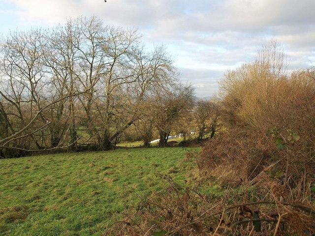 Towards Combe Farm