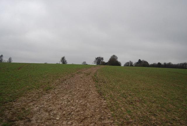 Muddy path to Chiddingstone