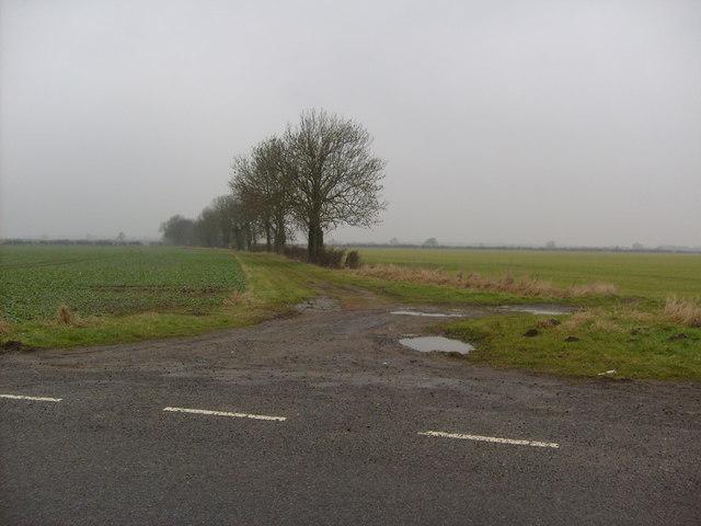 Track off Linwood Road