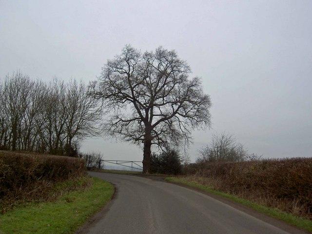Bend on Ell Lane Brinklow, Warwickshire