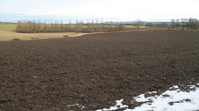 Ploughed field, Bunkle