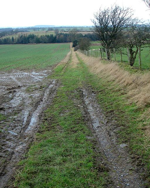 Bridleway north of Black Bull Farm