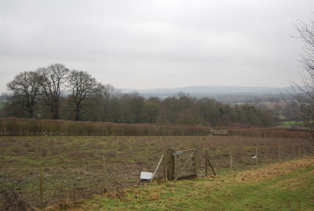 View north from Chiddingstone