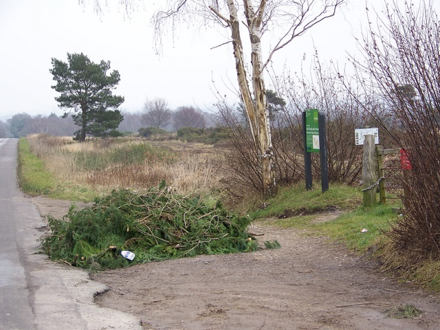 Flytip, Holt Heath
