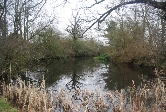 Pond, The Triangle, Chiddingstone