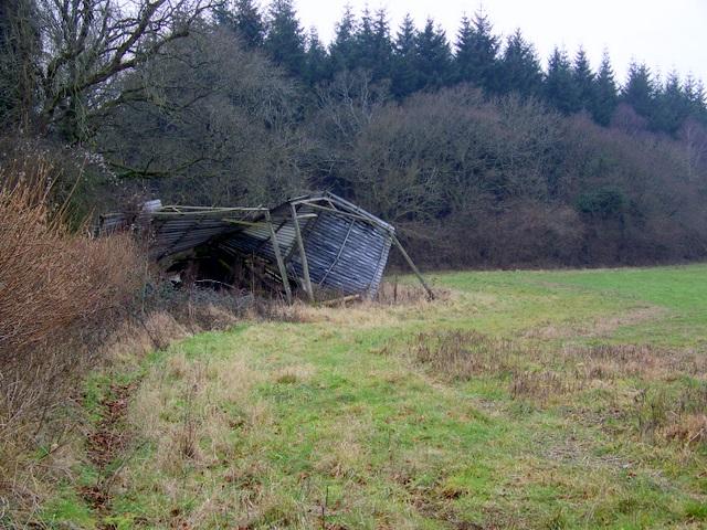 Derelict barn near Damerham