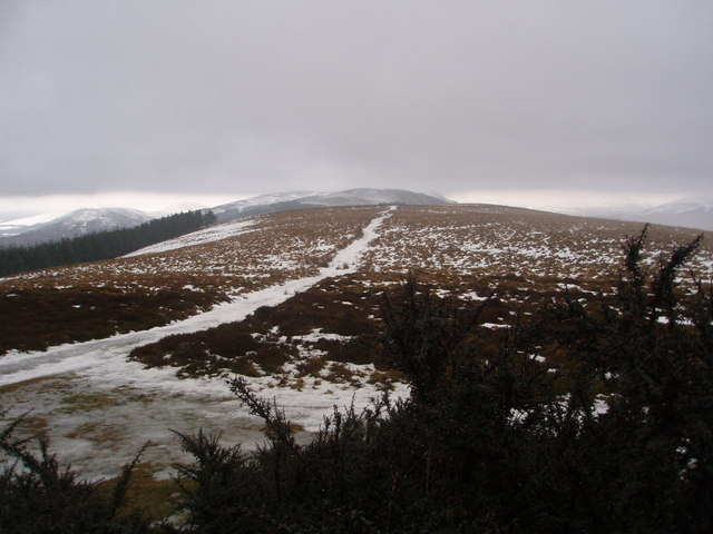 Track across the ridge of Tulloch Hill