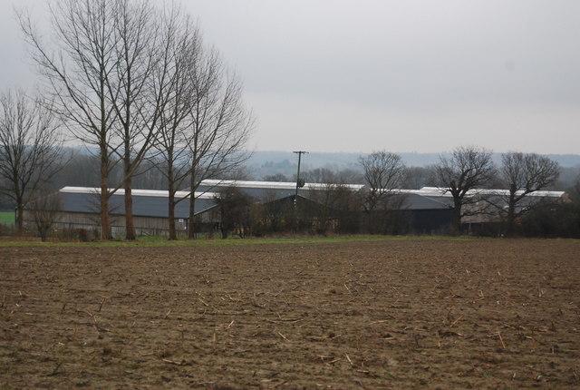 Vexour  Farm