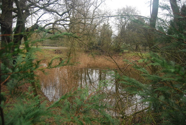 Pond at Vexour