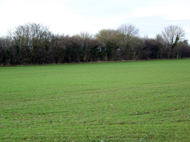 Arable field near Leighton