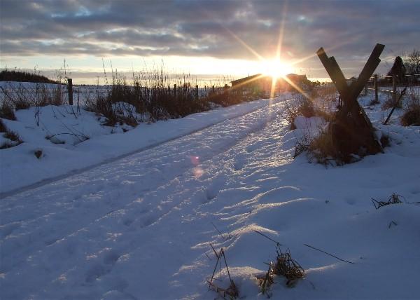 Access road to Craigton Farm, Monikie